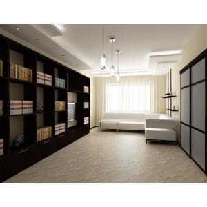 Библиотечный шкаф
