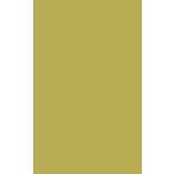 Фасады из Акрилайна оливковые, глянцевые