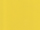 0670 Желтый Альтамир