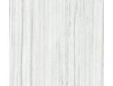 №163 Дуб белый